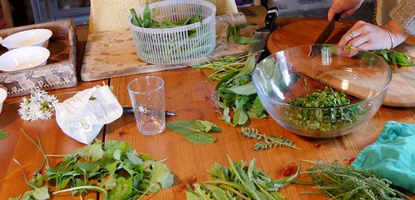 préparation de plantes sauvages
