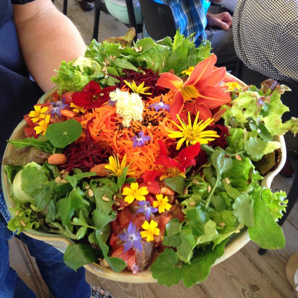 Salade sauvage et fleurie